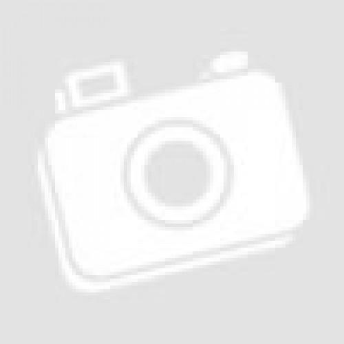 Carton ALB A4 160 gr/mp 250coli/top
